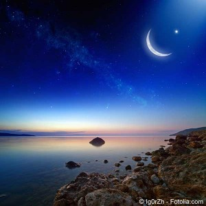 lune0806