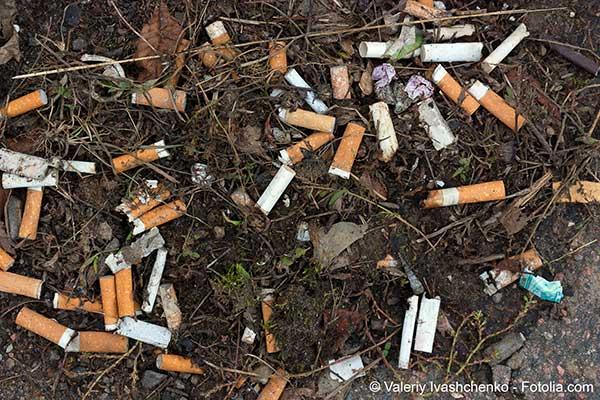 Photo de Le tabac semble protéger contre le coronavirus