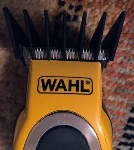 wahl01