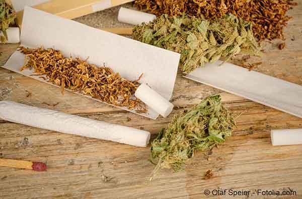 cannabis1304