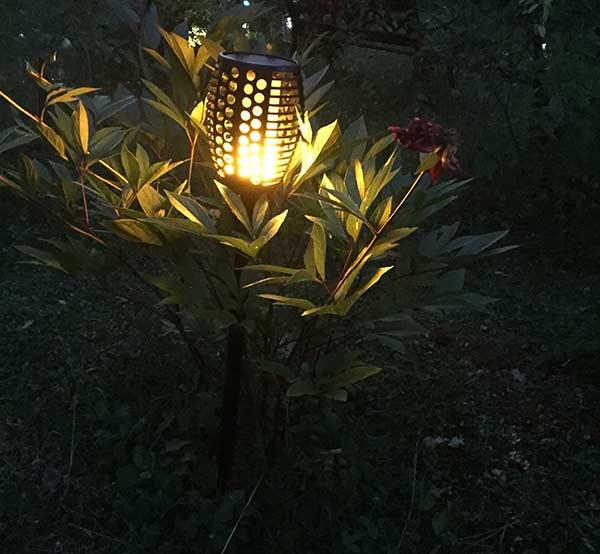 Par Aglaia Notre Jardin Lampe De À Dansante Flamme Siècle m8nNwy0Ov