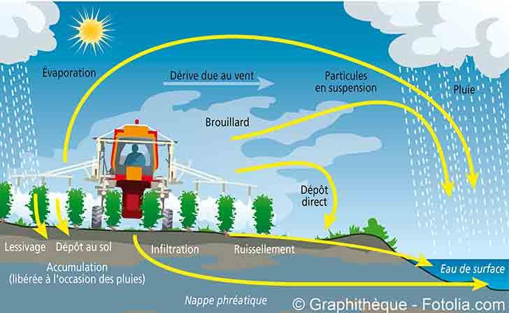 Photo of Risques environnementaux et connaissances actuelles