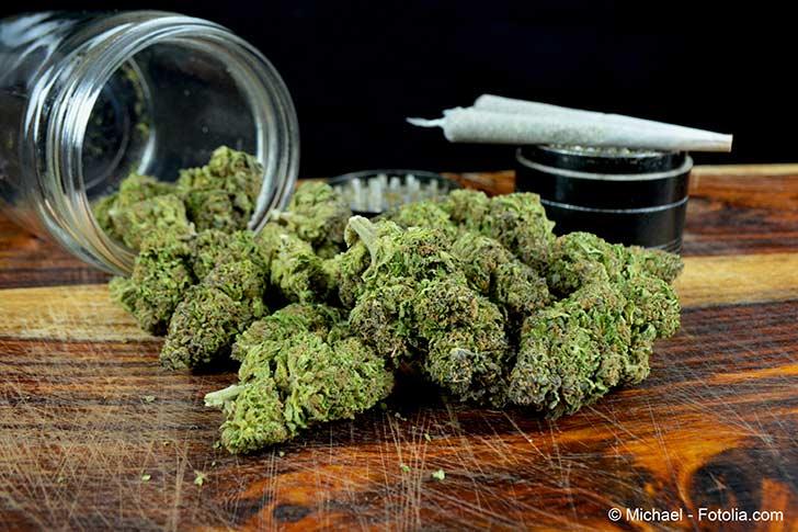 Photo of L'expérimentation thérapeutique du cannabis enfin annoncée pour septembre prochain