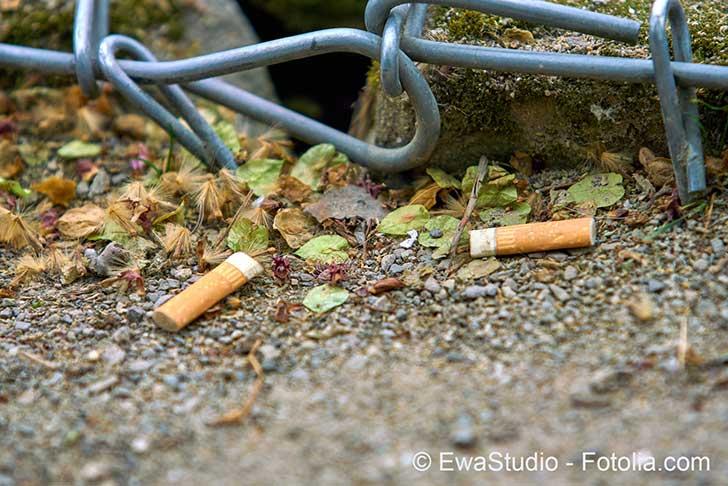 Photo of Il faut résoudre la pollution par les mégots de cigarettes