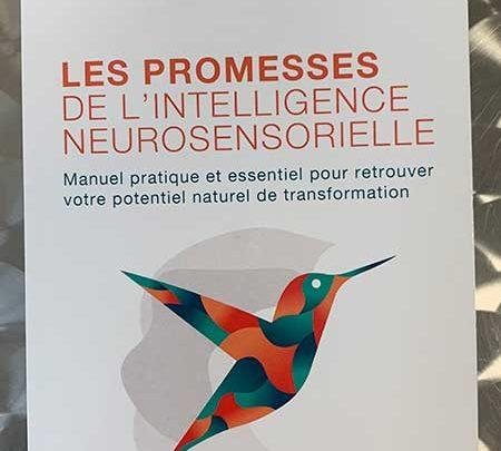 Photo of Les promesses de l'intelligence neurosensorielle de Masselot et S. Kallel chez Le Courrier du Livre