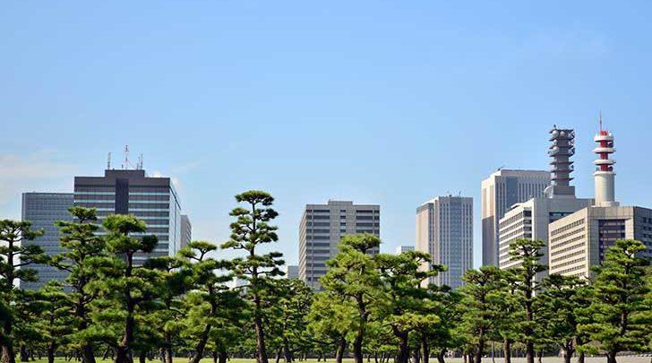 Photo of Les forêts urbaines constituent de ilots de fraicheur en ville
