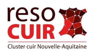 Photo de La filière cuir recrute en Nouvelle-Aquitaine de nombreux postes sont à pourvoir