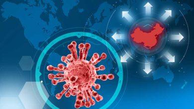 Photo of Des cas de coronavirus ont été détectés dans une douzaine de pays dont 3 en France