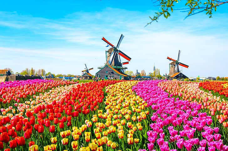 hollande pays