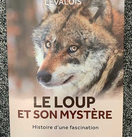 Photo of Le loup et son mystère de Christophe Levalois de Le courrier du livre